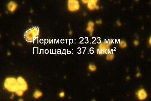 Измерения по микрофотографии готового электролюминофора ZnS:Cu в программе Altami Studio