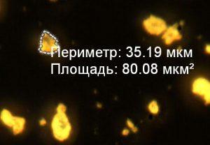 Измерения по микрофотографии готового электролюминофора ZnS:Cu,Mn (0,8%) в программе Altami Studio