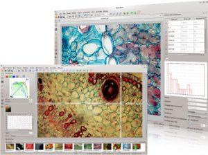Altami Studio - Программа для управления устройствами захвата изображений, ручного и автоматического измерения объектов интереса, а также обработки и анализа изображений в режиме реального времени
