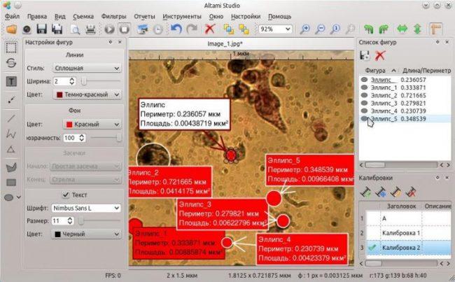 Анализ изображений в программе Altami Studio