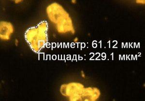 Измерения по микрофотографии готового электролюминофора ZnS:Cu,Mn (1,2%) в программе Altami Studio