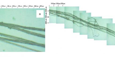 Анализ теплоизоляционных материалов на основе растительных волокон при помощи программы Altami Studio