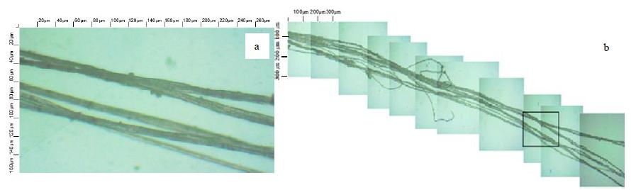 Световая микроскопия льняного очеса: a - внешний вид очеса, b - элементарные волокна в очесе